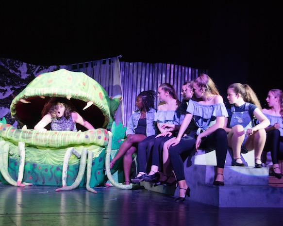 Sharpe Academy presents LITTLE SHOP OF HORRORS